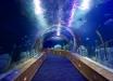Секретные подводные строения соединяют два материка: между Антарктидой и Австралией под водой есть туннели – кадры