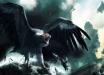 В Канаде сняли на видео легендарное мифическое существо из сказаний различных народов - в мире разгораются споры