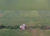 """Удары ВСУ по позиции """"корпусов"""" в Приазовье попали на видео - бойцы ООС использовали дрон"""