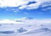 В Антарктиде нашли загадочные мертвые организмы, ученые не могут поверить в увиденное