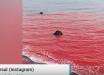Страшное библейское пророчество сбылось: произошедшее в Ормузском проливе приблизило Судный день - видео