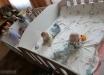 """...Бахтеева навестила малышей Донецкого областного специализированного дома ребенка  """"Малютка """", а..."""