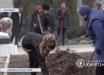 """""""Бесплатная рабсила вкалывает"""", - соцсети не могут прийти в себя из-за фото из оккупированной Макеевки"""