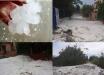"""""""Ледниковый период"""" в Греции - аномалии с Гольфстримом привели к """"климатическому апокалипсису"""""""
