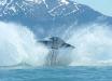 Крушения инопланетных кораблей над поверхностью моря: в Сети появились сенсационные подробности