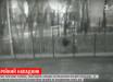 """В Киеве разгуливает опасный маньяк, на счету уже десятки жертв: """"Болезнь прогрессирует"""""""