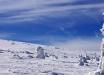 Ледниковый период на Рождество: США предупредили о трагическом конце света