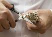 Для утепления жилых домов ученые предлагают использовать окурки от сигарет