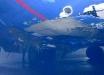 """В аэропорту """"Борисполь"""" произошла авария самолета – кадры"""