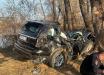 В России в ДТП погиб крупный чиновник: авто вылетело с дороги и врезалось в дерево - фото