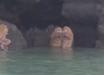 Тролли в Таиланде: сверхъестественные создания появились перед людьми и начали проводить таинственный обряд – кадры