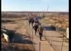 """""""Хунта, спасай"""", - кадры забега """"ру***ого мира"""" в Станице Луганской потрясли соцсети"""