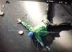 Новые подробности захвата стрелка Белько на мосту в Киеве - эффектные кадры