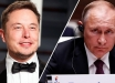 Сеть без Московии, или какой неприятный сюрприз Владимиру Путину готовит Илон Маск, - блогер
