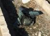 Иранские СМИ показали головку самонаводящейся ракеты, которая, предположительно, сбила украинский авиалайнер