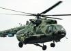 На Донбассе домашний пес искусал мальчика - ребенка эвакуировал вертолет ВСУ