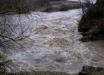 Наводнение в Закарпатье: погиб 11-летний мальчик - ужасные подробности