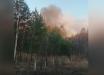 Чернобыль пылает уже сутки: пожар охватил 100 га, фон радиации повышен в 20 раз, задействована авиация