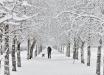 """В Украину идет первый снег и похолодание: синоптики рассказали, какие области """"засыпет"""" первыми"""