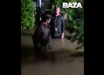 Подмосковье ушло под воду: из-за ливней в России затопило целые поселки, люди остались на улице, - видео