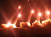 Турция применила в Идлибе тактику ВС РФ из Донбасса: кадры массированной атаки T-122 Sakarya