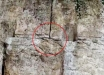 Время Нибиру наступило: из Стены Плача выпала змея – все признаки апокалипсиса сбылись: фото