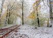 Зимы в Украине больше не будет: синоптики сделали тревожный прогноз и объяснили, к чему готовиться