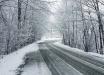 Теплый ноябрь заканчивается: синоптики дали прогноз по зиме в Украине