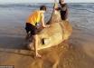 """Рыба-гигант шокировала рыбаков: кадры с """"солнечным чудовищем"""" вызвали бум в Сети - фото"""