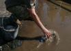 Ждут Зеленского: в Луцке военным приказали вычерпывать воду из луж к приезду президента