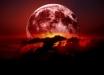 Кровавая луна, Супер-Луна и Луна Волка: предсказание древних инков о конце света сбывается