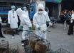 Новые факты о COVID-19: вирус начал распространяться не из рынка китайского Уханя, - ученые КНР