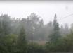 Ураган в Подмосковье: мощный ветер повалил сотни деревьев и сдул торговую палатку, видео