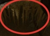 Остатки с Нибиру нашли в неожиданном месте: живые щупальца гуманоидов ужаснули экспертов - фото