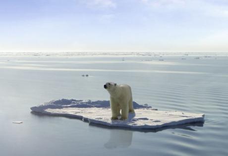 глобальное потепление, таяние льдов, мировой океан
