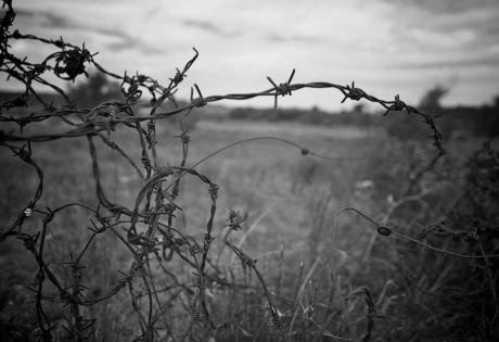 """Донецк, """"ДНР"""", похищения людей, боевики, трудовые лагеря, люди, общество"""