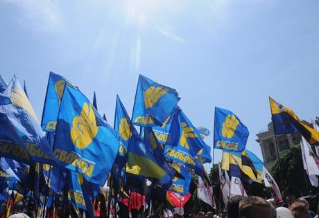 свобода, цик, митинг возле цик, митинг свободы, протесы в киеве, 30 октября, митинг партии свобода, тягнибок, протесты в киеве