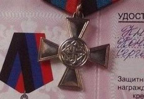 беркут, днр, медаль, свастика