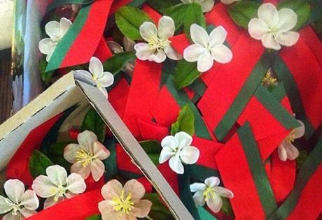 день победы, беларусь, георгиевская лента, яблоня, цветы