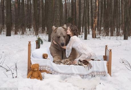 модель, россия, медведи,