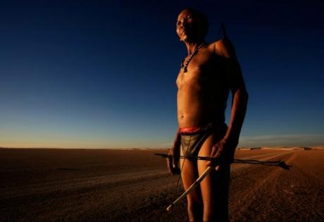 африка, бушмены, племена, человек, днк