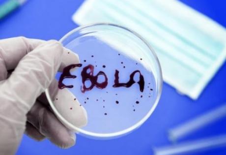 эбола, общество, происшествия